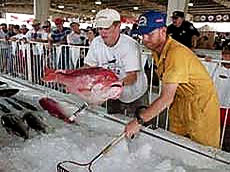 Deep Sea Fishing Rodeo Biloxi Mississippi