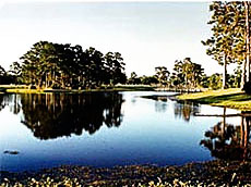 Sunkist Golf Club Biloxi Mississippi